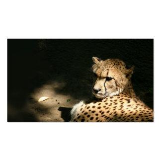 Tarjeta del perfil del guepardo tarjetas de visita