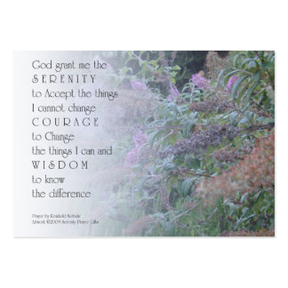Tarjeta del perfil del jardín del rezo de la seren tarjeta personal