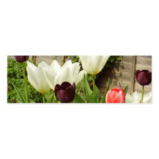 Tarjeta del perfil del jardín del tulipán tarjetas de visita mini