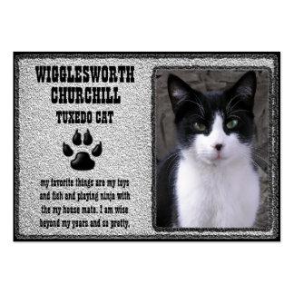 Tarjeta del perfil del mascota gato plantilla de tarjeta de visita