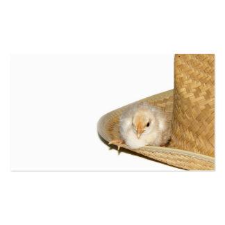 Tarjeta del perfil del polluelo del bebé del tarjetas de visita