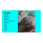 Tarjeta del perfil del sello plantillas de tarjeta de negocio