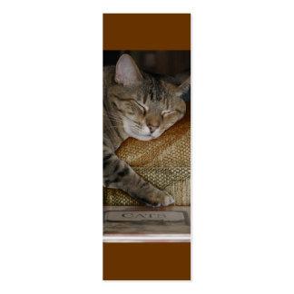 Tarjeta del perfil del sueño del gatito tarjetas de visita mini