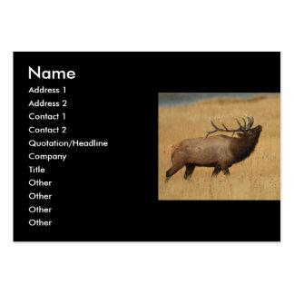 tarjeta del perfil o de visita alce tarjetas de visita