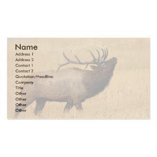 tarjeta del perfil o de visita, alce tarjeta personal