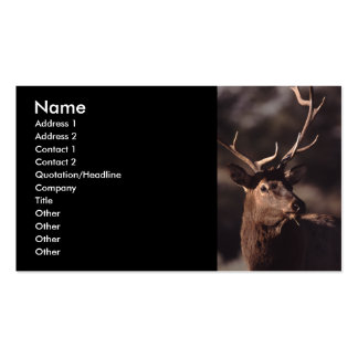 tarjeta del perfil o de visita, alce plantilla de tarjeta de visita