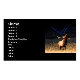 tarjeta del perfil o de visita, alce tarjetas de visita