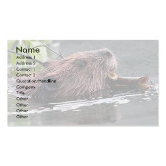 tarjeta del perfil o de visita, castor tarjetas de visita