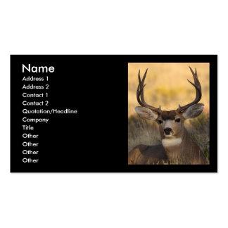 tarjeta del perfil o de visita, ciervo plantilla de tarjeta personal
