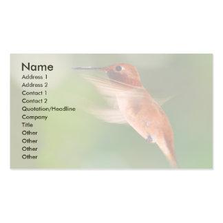 tarjeta del perfil o de visita, colibrí plantilla de tarjeta de visita