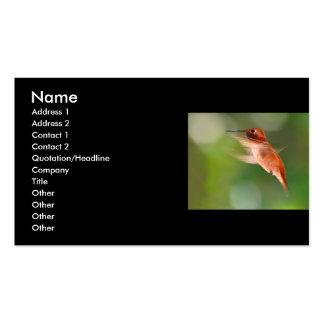 tarjeta del perfil o de visita, colibrí tarjeta personal