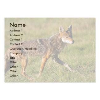 tarjeta del perfil o de visita coyote plantillas de tarjeta de negocio