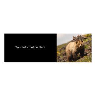 tarjeta del perfil o de visita, oso grizzly tarjetas personales