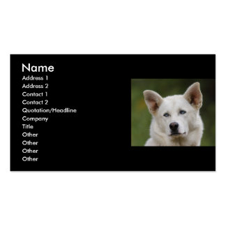 tarjeta del perfil o de visita, perro tarjetas personales