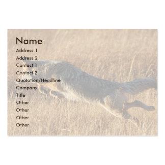 tarjeta del perfil o de visita, salto del coyote plantillas de tarjeta de negocio