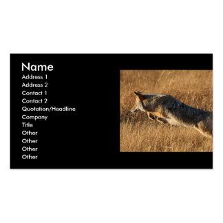tarjeta del perfil o de visita, salto del coyote tarjetas de visita