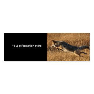 tarjeta del perfil o de visita, salto del coyote tarjetas personales