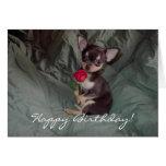 Tarjeta del perrito de la chihuahua del feliz cump