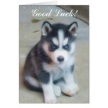Tarjeta del perrito del husky siberiano de la buen