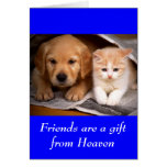 Tarjeta del perrito y del gatito del golden retrie