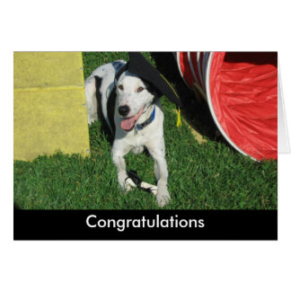 Tarjeta del perro de la graduación