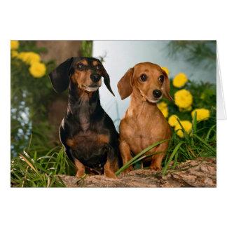 Tarjeta del perro de perrito del Dachshund del