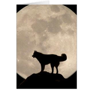 Tarjeta del perro del lobo del Malamute de la