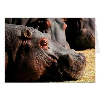 Tarjeta del personalizable de la actitud del hipop