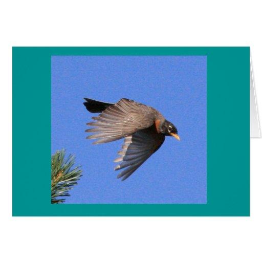 Tarjeta del petirrojo de vuelo