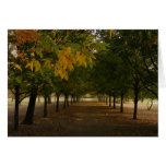 Tarjeta del rastro del otoño