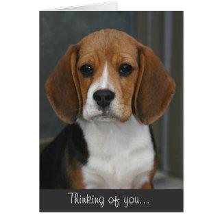 Tarjeta del retrato del beagle