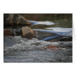 Tarjeta del río