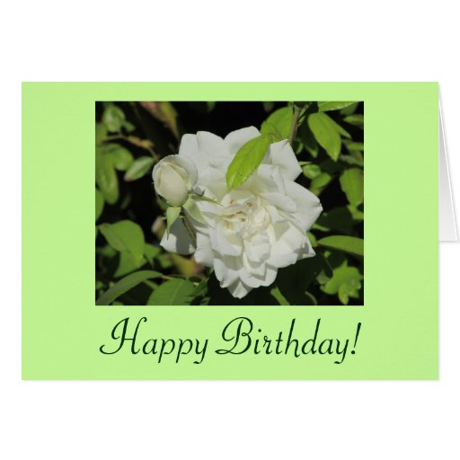 Tarjeta del rosa blanco del feliz cumpleaños