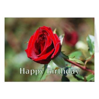 Tarjeta del rosa rojo del feliz cumpleaños
