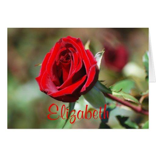 Tarjeta del rosa rojo del feliz cumpleaños de Eliz