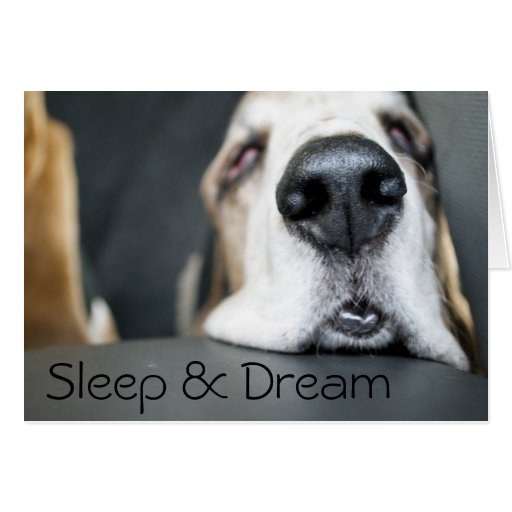 Tarjeta del sueño y del sueño