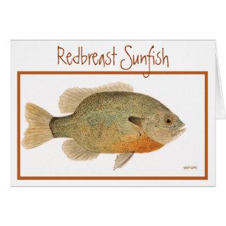 Tarjeta del Sunfish de Redbreast