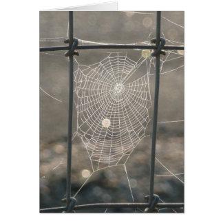 Tarjeta del Web de araña