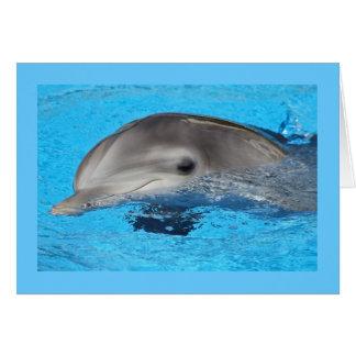 Tarjeta, delfín # 1