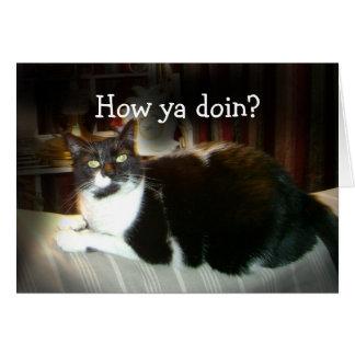 Tarjeta divertida del gato cómo usted Doin,