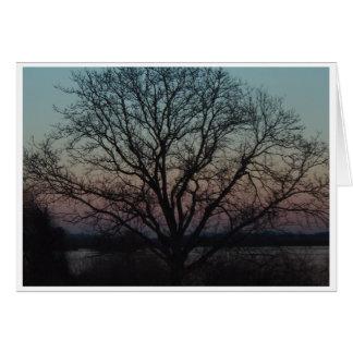 Tarjeta doblada árbol de Middlecreek