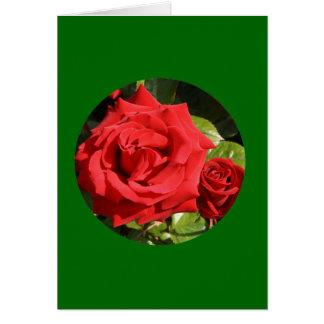 """Tarjeta, """"dos rosas rojos en el círculo"""" O-1 Tarjeta De Felicitación"""