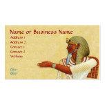 Tarjeta egipcia del perfil del negocio de las anti tarjeta personal