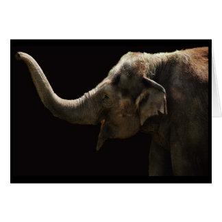 Tarjeta Elefante-En blanco feliz