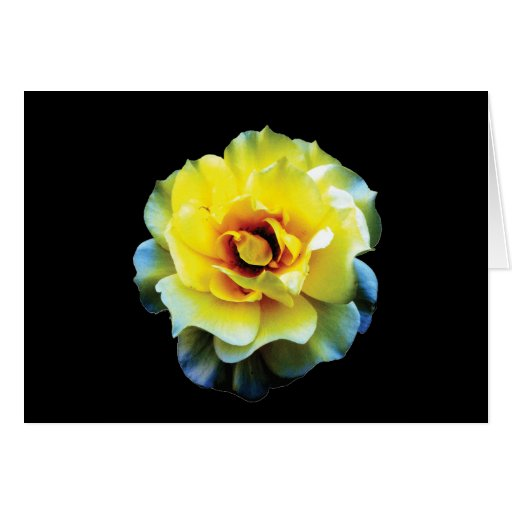 Tarjeta elegante del rosa amarillo