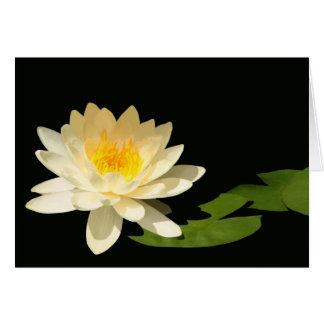 Tarjeta en blanco amarilla de Waterlily