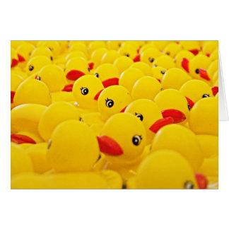 Tarjeta en blanco de la foto de goma del pato