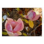 Tarjeta en blanco de la magnolia