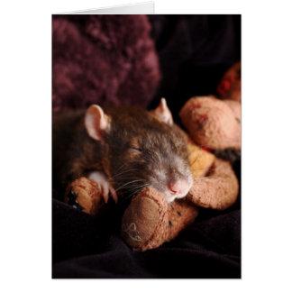 Tarjeta en blanco de la rata