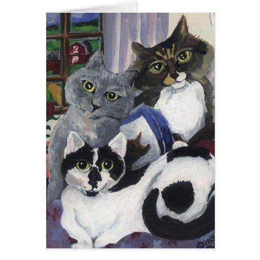 Tarjeta en blanco de los gatitos de acrílico
